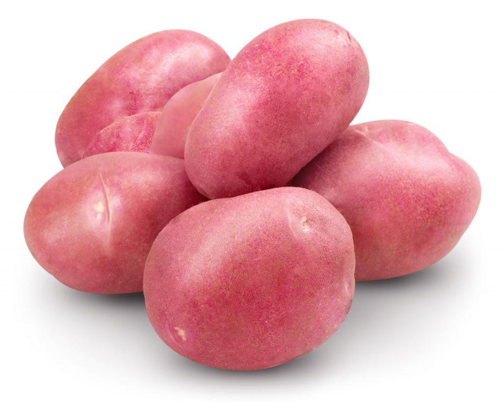Photos potato varieties Rosario