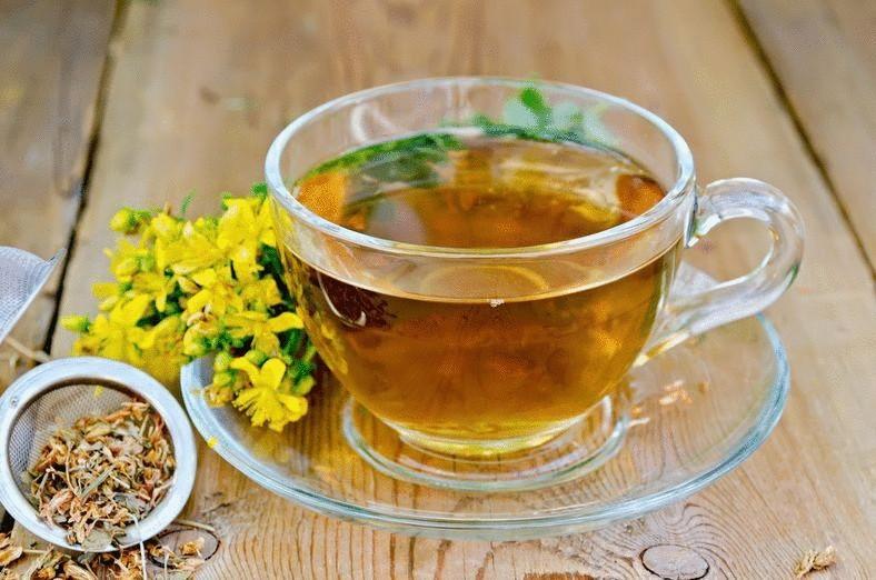 photos St. John's wort tea